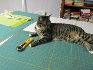 Taz - supervising the cutting process.